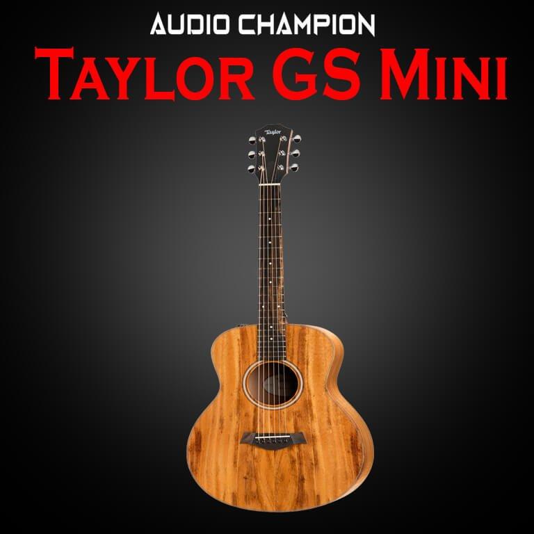 Taylor GS Mini